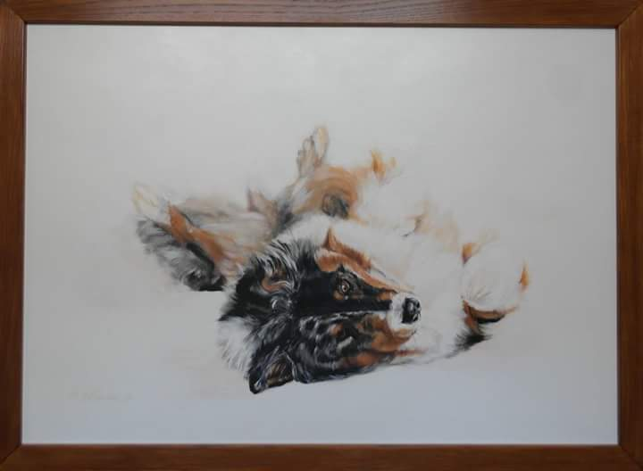 "Hundeportrait ""Sammy"""